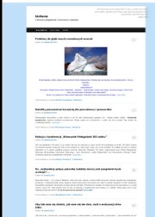 BizNurse : o biznesie w pielęgniarstwie i nowoczesnym zarządzaniu